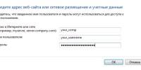 Ввод учётных данных в диспетчере паролей